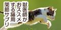 獣医師推奨のネコ専用関節サプリメント【毎日散歩(カツオ味)】新規商品購入