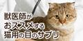 獣医師推奨のネコ専用(カツオ味)目のサプリメント【毎日愛眼】ブルーベリー&ルテイン