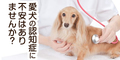 【犬用認知症予防サプリ 毎日一緒 DHA&EPA】新規商品購入
