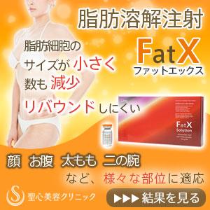 脂肪溶解注射FatX(ファットエックス)