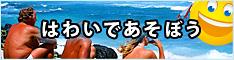 ハワイオプショナルツアー