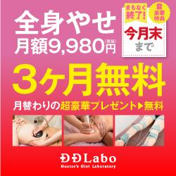 大阪 痩身エステ D.D.Labo