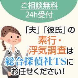 総合探偵社TS