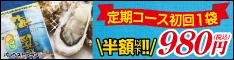 海乳EX【定期ロングバージョンバナー】