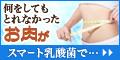 シェイプアップ乳酸菌
