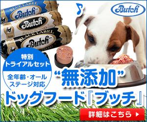 Butchトライアル