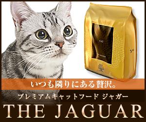 ジャガー2