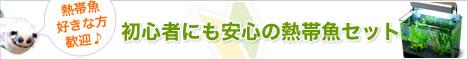 ������.com
