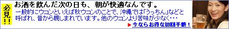 琉球ウコン