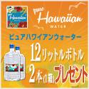 ハワイ 水